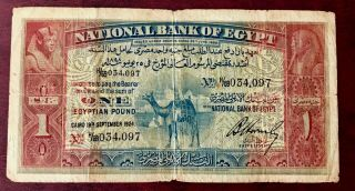 "Egypt 1 Pounds 1924 Camel Banknote Hornsby Sign.  S.  N.  "" 34097 "" Pick - 18.  Rare"