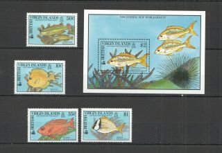 M1110 1990 British Virgin Islands Fishes 687 - 90 Michel 22,  5 Euro Bl,  Set Mnh
