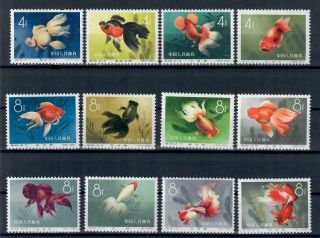 China - Sc.  5506/17 Goldfisch Mnh Search (8149)