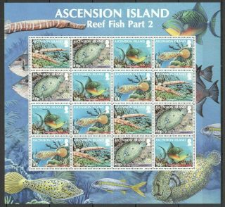 L1533 2010 Ascension Island Marine Life Reef Fish 2 1170 - 3 Michel 40 Eu Sh Mnh