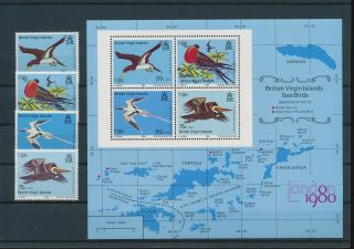 Lk67865 British Virgin Islands Animals Fauna Flora Birds Fine Lot Mnh