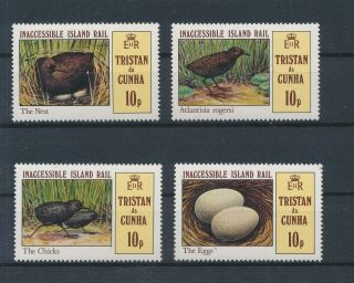 Lk63178 Tristan Da Cunha Animals Fauna Flora Birds Fine Lot Mnh