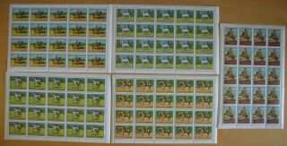 A686.  Fujeira - Mnh - Nature - Horses - Riders - Full Sheet -