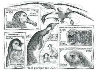 Year 2018 - Taaf - French Antarctic - Faces Values - Bf Animals Protect Mnh/ T