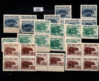 / 10x Albania - Mnh - Animals - Bear - Wild Animals