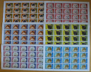 C304.  Manama - Mnh - Animals - Cats - Full Sheet -