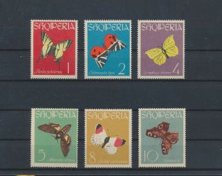 Lk72371 Albania Insects Bugs Flora Butterflies Fine Lot Mnh