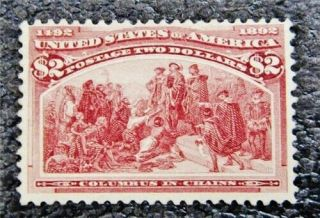 Nystamps Us Stamp 242 Appears Og Nh $4000