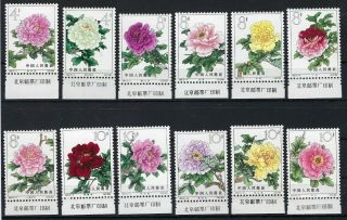 China Prc 1964 Peonies Set Of 15 Marginals With Inscriptions Mh,  S61