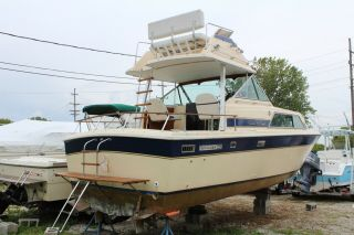 1983 Chris Craft 291 Catalina 2