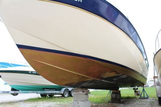 1983 Chris Craft 291 Catalina 4