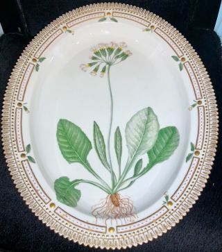"Royal Copenhagen Flora Danica Serving Oval Dish ""primula Unicolor Nolt"" 20 3517"