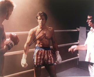 Large Sylvester Stallone Signed - Autographed Rocky Photo 11x14 With