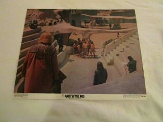 Planet Of The Apes,  Heston,  Lobby Card 5 1968