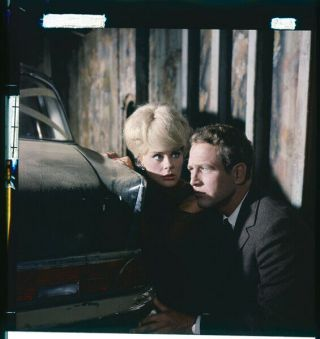 The Prize 1963 Paul Newman Elke Sommer 2.  25 X 2.  25 Photo Transparency