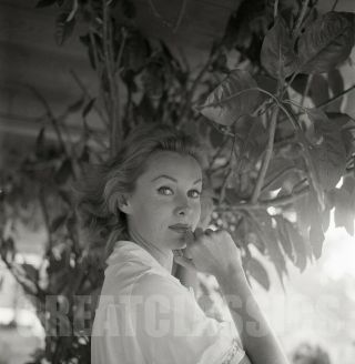 Rhonda Fleming 1962 2 1/4 Camera Negative Peter Basch