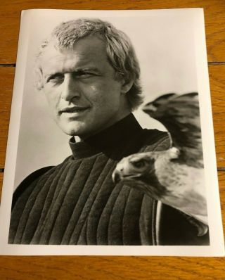 Rutger Hauer Glossy Picture Lady Hawke 8 X 10 Black And White Vintage