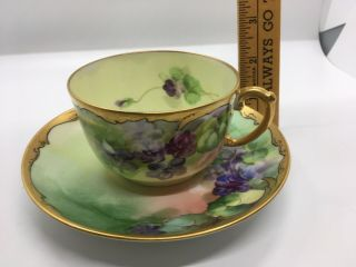 Antique Pickard Hand Painted Cup & Saucer D & Co.  France Enamel,  Wa Gilt Enamel