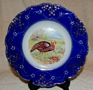 "W P La Belle China Flow Blue Dinner Plate 10 "" Antique Turkey Plate 3"
