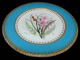 Antique Royal Worcester Raised Gold Hand Painted Turquoise Band Cabinet Plate