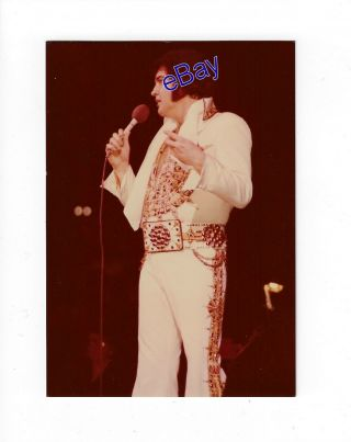 Elvis Presley Concert Photo - You Gave Me A Mountain 1977 - Jim Curtin