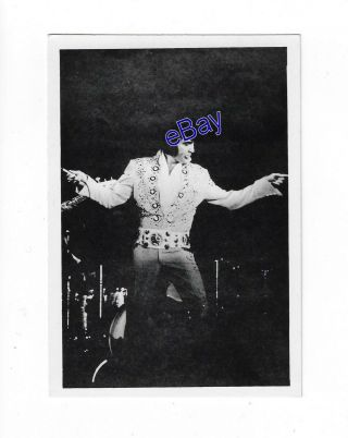 Elvis Presley Kodak Concert Photo - On Tour 1972 - Jim Curtin Vintage