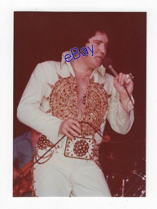 Elvis Presley Concert Photo - Sundial King 1977 - Jim Curtin Vintage