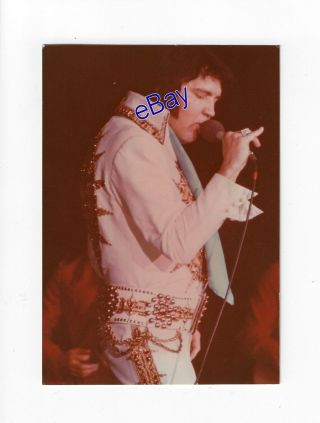 Elvis Presley Concert Photo - Softly As I Leave You 1977 - Jim Curtin