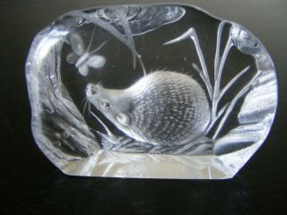 Vintage Glass Crystal Hedgehog & Butterfly Paperweight By Capredoni - Signed